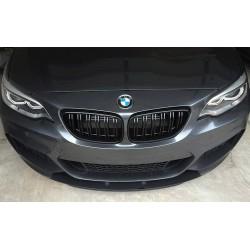 BMW - F22 2 Serisi M2 Panjur 2014-2019